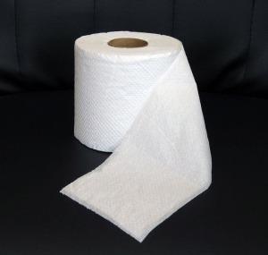 toiletpaperpic